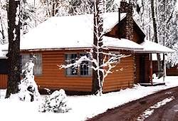 Bayview Cabin