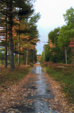 St Germain Wisconsin Cabins And Vacation Rentals
