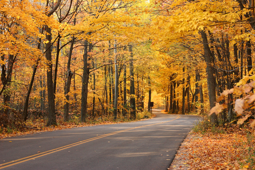 Fall Wisconsin Cabins And Vacation Rentals