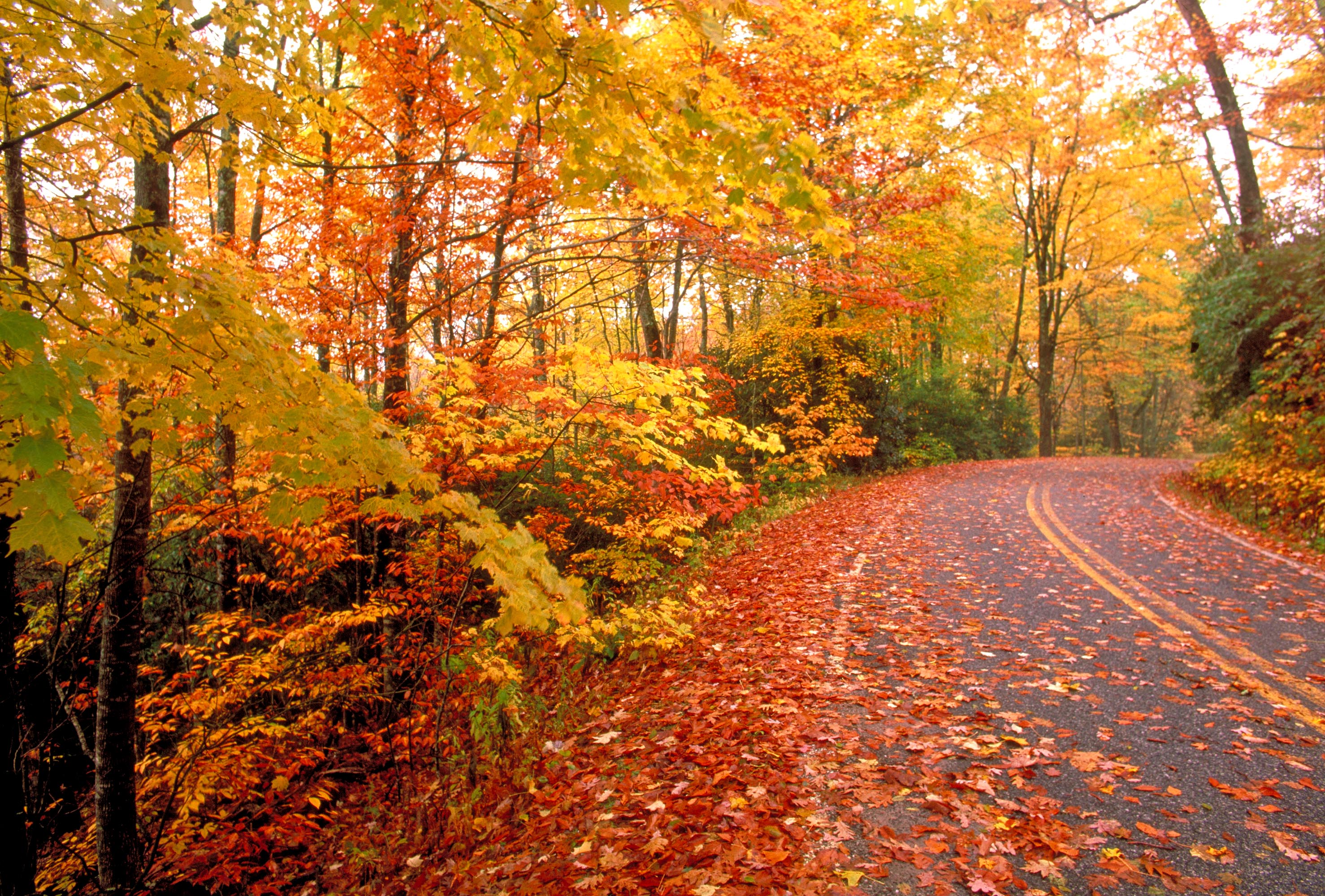 "Enjoying a Fall Vacation in Wisconsin – ""Colorama ..."