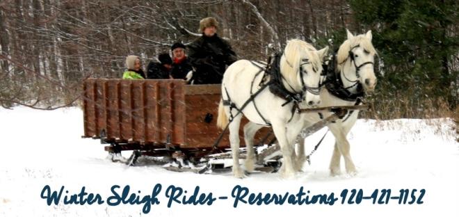sleigh-rides