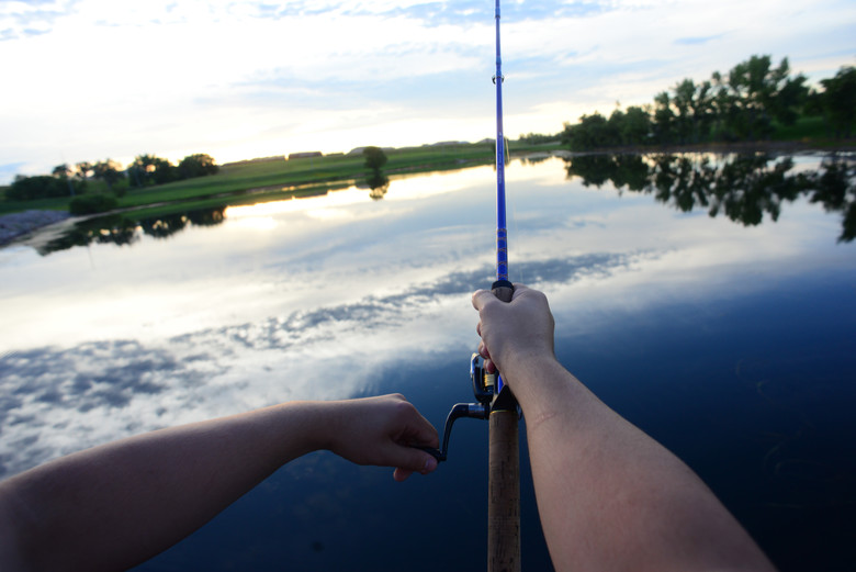 Rod 'n' reel: base lakes open to fishing
