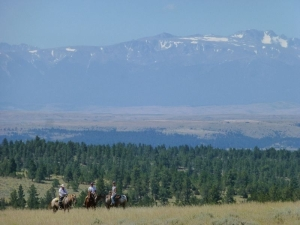 Pet Friendly Montana Ranch