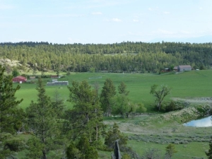 Ranch in Montana for rent