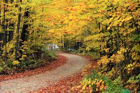 #Michigan Fall/Winter Vacation Rentals- It's Time to Start Thinking….